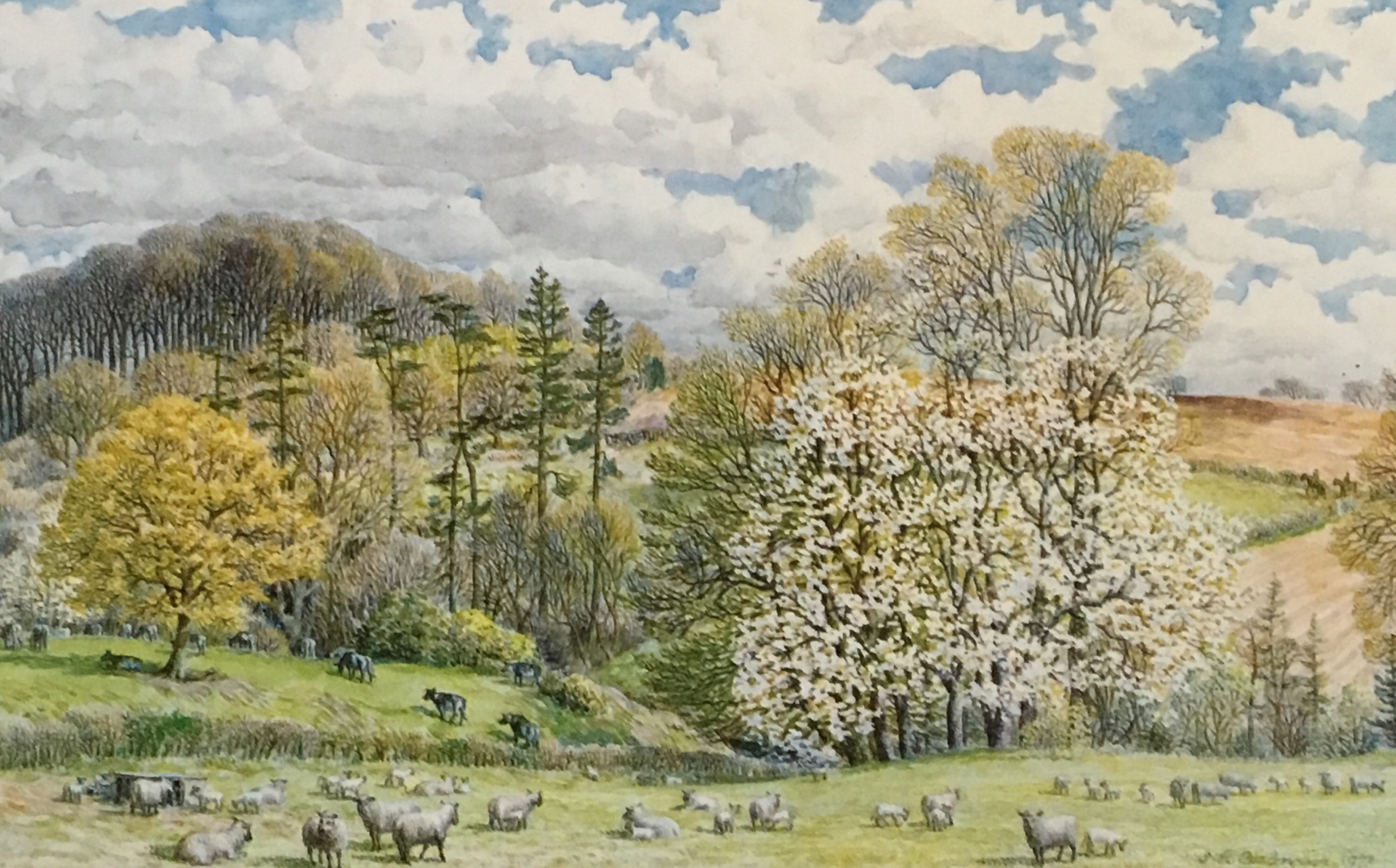 A Spring Wood Near Midhurst - by S R Badmin RWS RE AIA FSIA (1906-1989)
