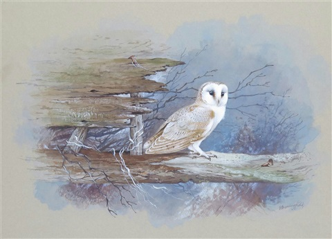 Barn Owl by Gordon Beningfield (1936 - 1998)