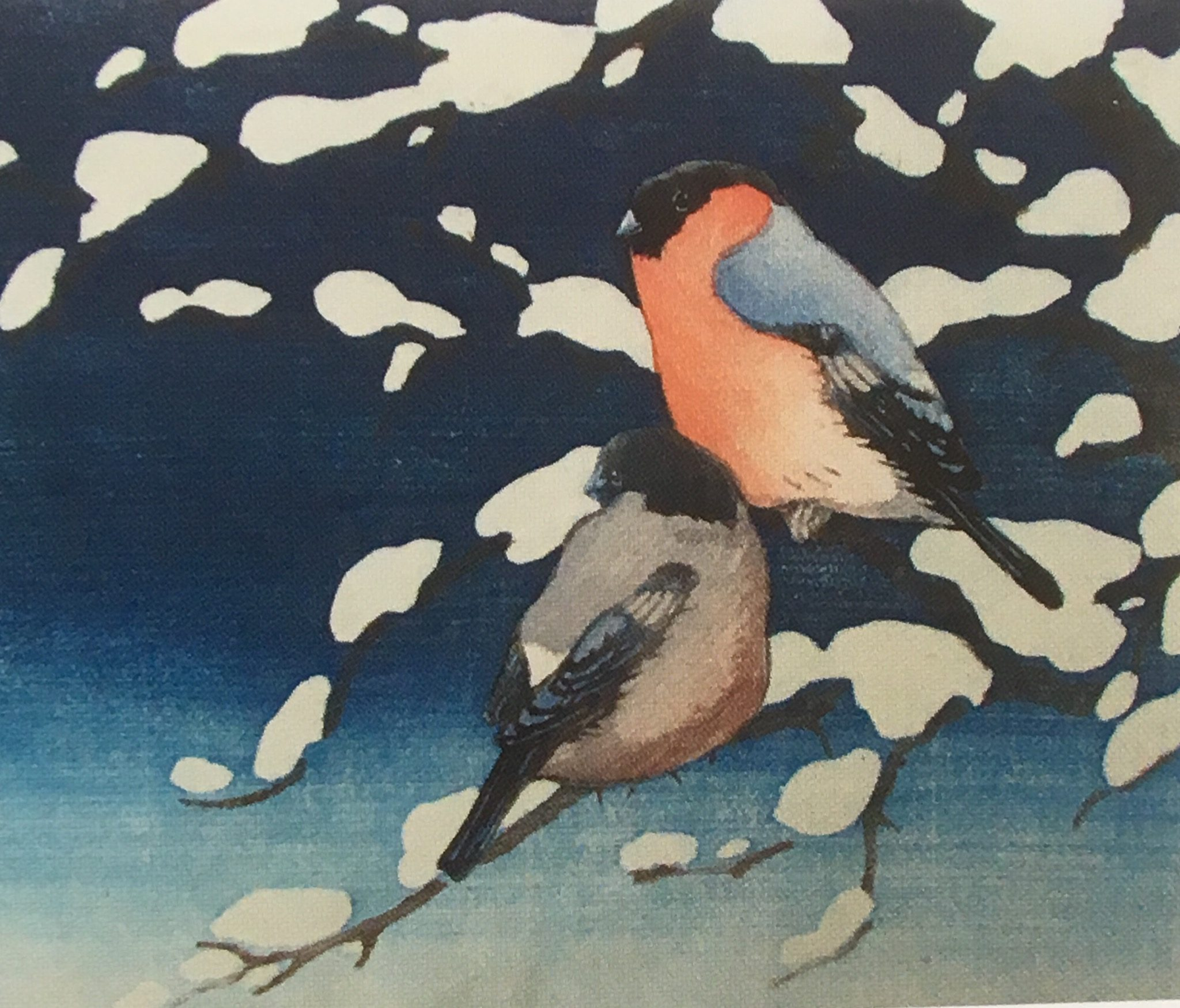 Haibun: Bullfinch on Snowy Branch
