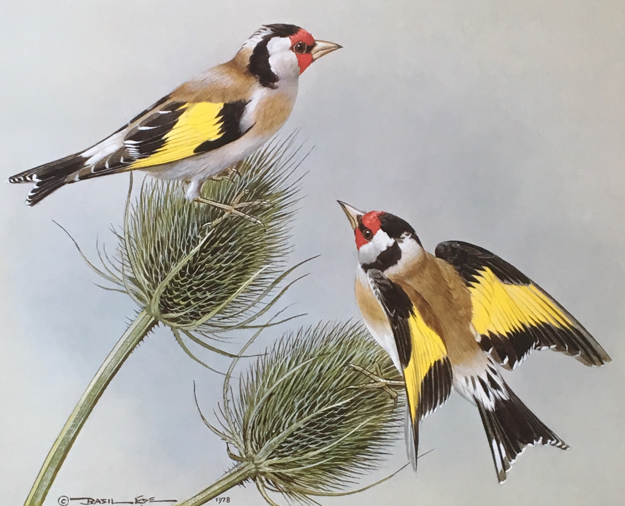 Painting in Words: Goldfinch